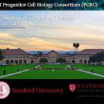 Stem Cell Training Course at Stanford